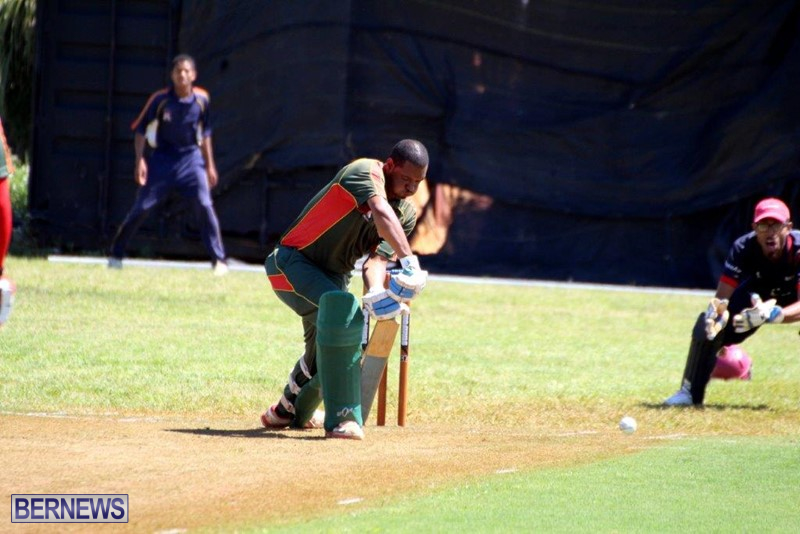 Bermuda-Cricket-Western-Stars-Willow-Cuts-17