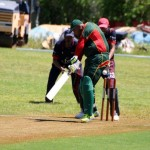 Bermuda Cricket Western Stars - Willow Cuts (3)