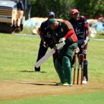 Bermuda Cricket Western Stars - Willow Cuts (4)