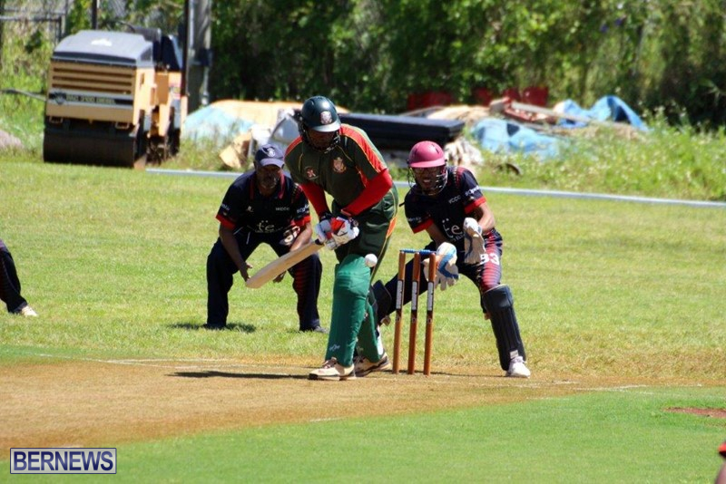 Bermuda-Cricket-Western-Stars-Willow-Cuts-5