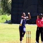Bermuda Cricket Western Stars - Willow Cuts (7)