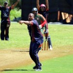 Bermuda Cricket Western Stars - Willow Cuts (9)