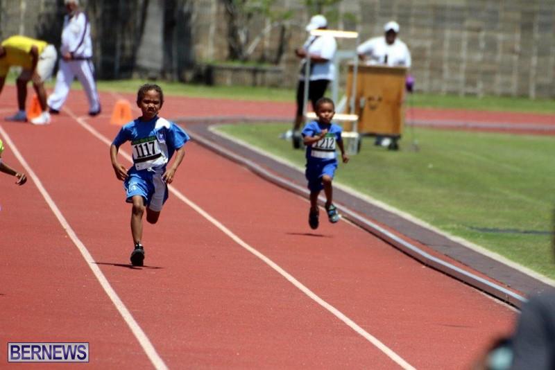 Bermuda-World-Athletics-Day-Track-Field-May-2016-2