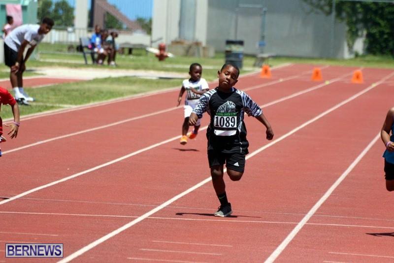 Bermuda-World-Athletics-Day-Track-Field-May-2016-4