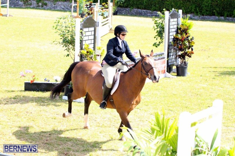 Equestrian-Bermuda-May-03-2016-1