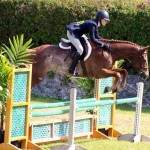 Equestrian Bermuda May 03 2016 (10)