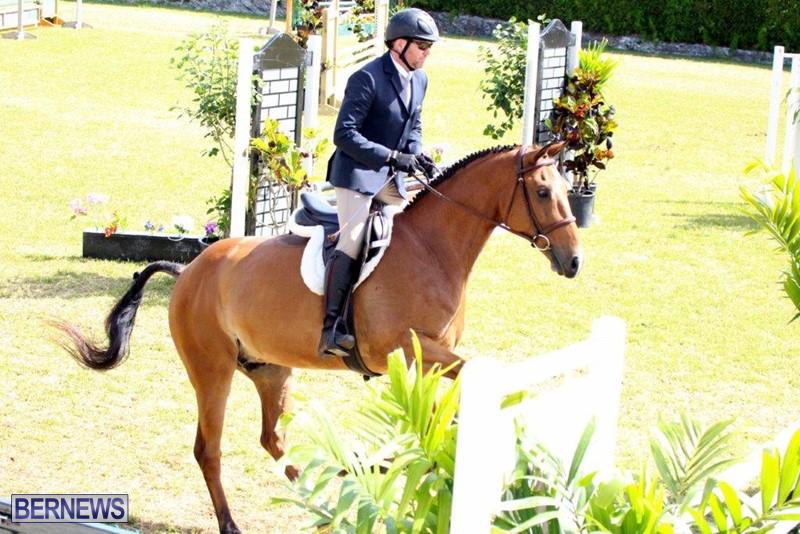 Equestrian-Bermuda-May-03-2016-11
