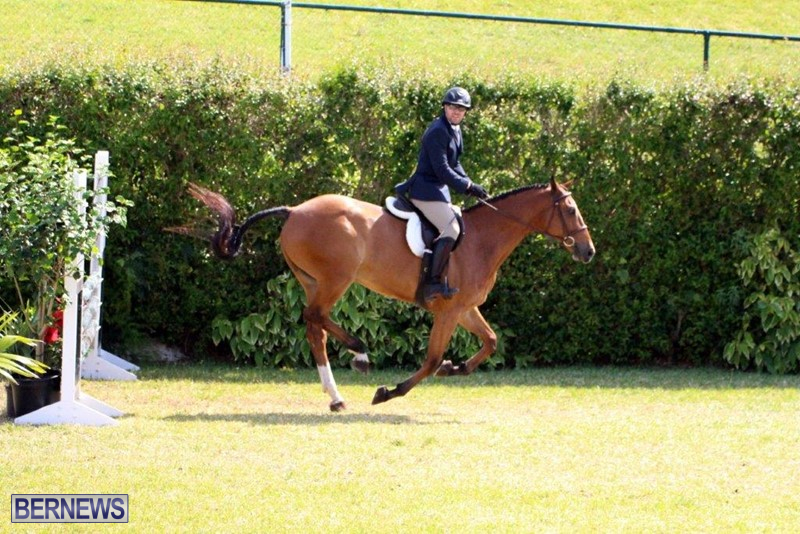Equestrian-Bermuda-May-03-2016-14