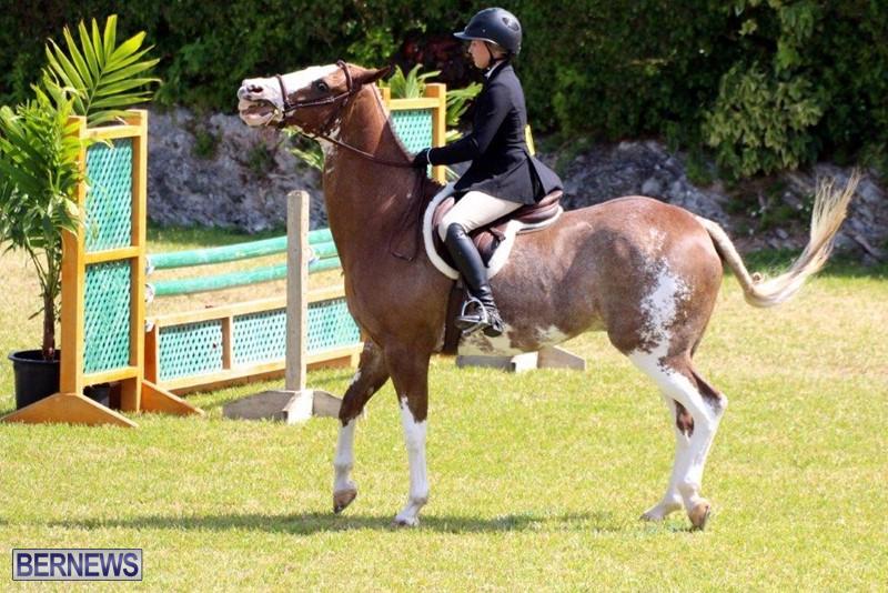 Equestrian-Bermuda-May-03-2016-17