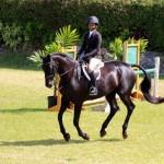 Equestrian Bermuda May 03 2016 (18)