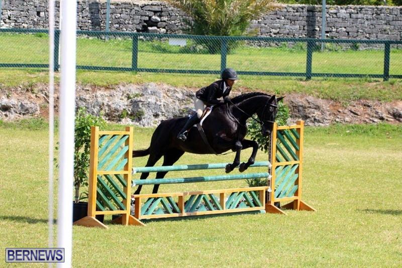 Equestrian-Bermuda-May-03-2016-19