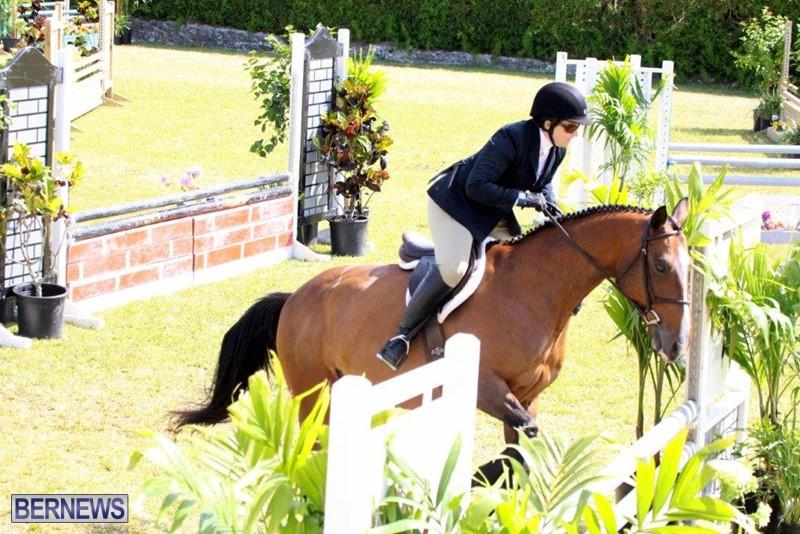Equestrian-Bermuda-May-03-2016-2
