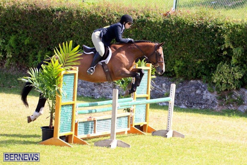 Equestrian-Bermuda-May-03-2016-3