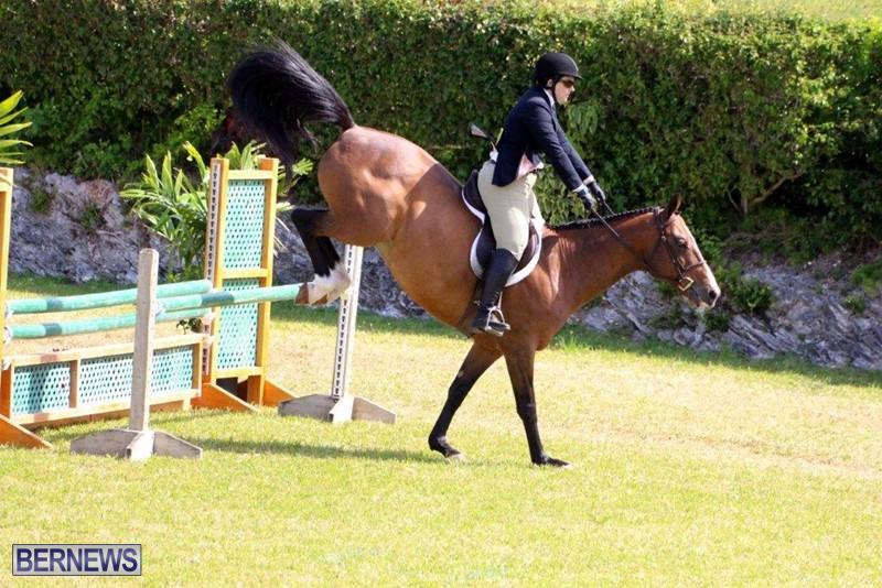 Equestrian-Bermuda-May-03-2016-4
