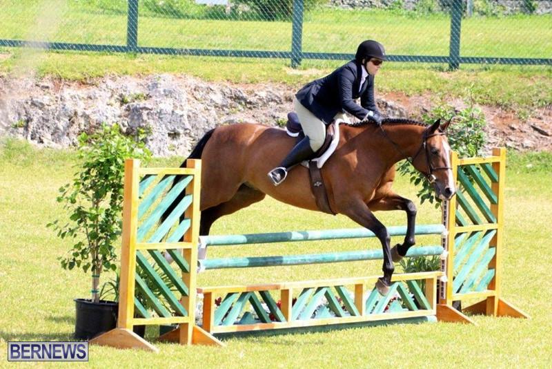 Equestrian-Bermuda-May-03-2016-5
