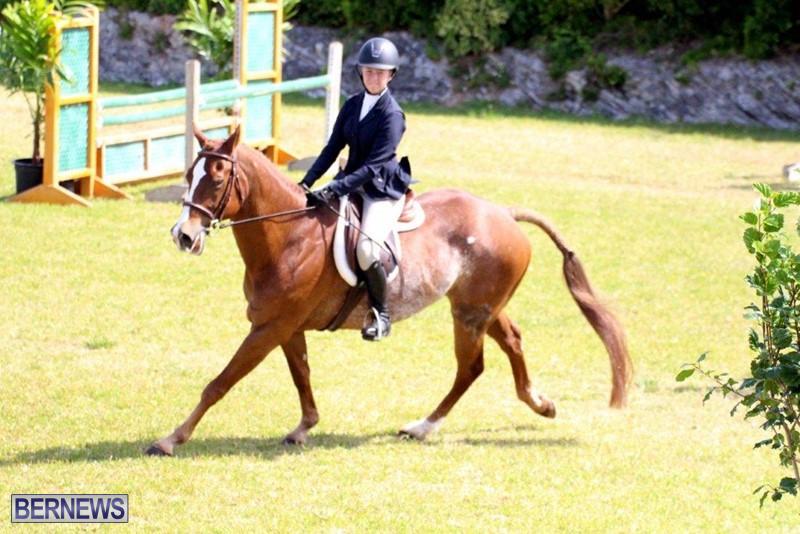 Equestrian-Bermuda-May-03-2016-7