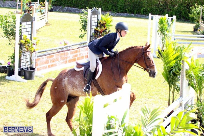 Equestrian-Bermuda-May-03-2016-8
