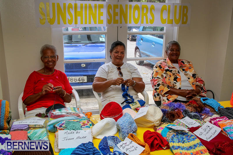 Heritage-Month-Seniors-Arts-and-Crafts-Show-Bermuda-May-4-2016-12