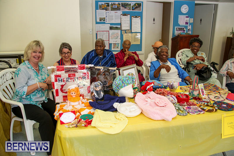 Heritage-Month-Seniors-Arts-and-Crafts-Show-Bermuda-May-4-2016-49