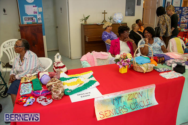 Heritage-Month-Seniors-Arts-and-Crafts-Show-Bermuda-May-4-2016-58