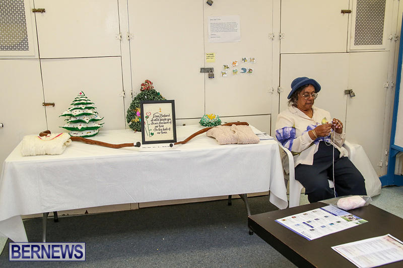 Heritage-Month-Seniors-Arts-and-Crafts-Show-Bermuda-May-4-2016-70