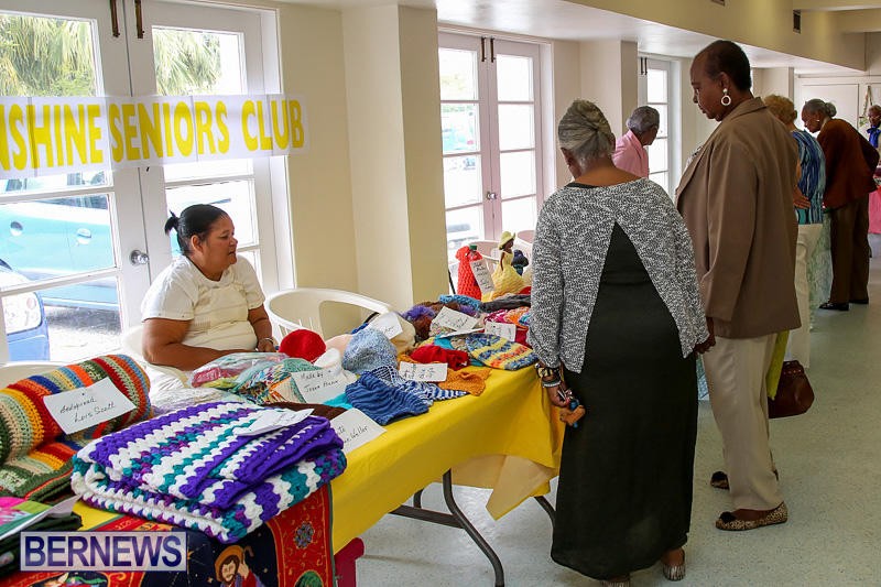 Heritage-Month-Seniors-Arts-and-Crafts-Show-Bermuda-May-4-2016-80