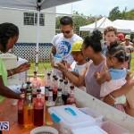 Somersfield Academy Fair Bermuda, May 14 2016-21