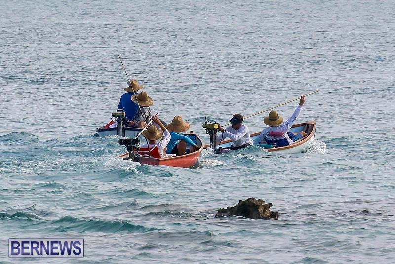 Around-The-Island-Seagull-Race-Bermuda-June-25-2016-28