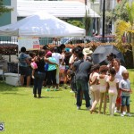Bermuda BHW Kids Carnival June 2016 (32)