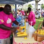 Bermuda BHW Kids Carnival June 2016 (9)