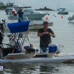 Bermuda Seagull Race June 2016 JM (24)
