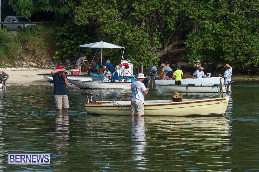 Bermuda-Seagull-Race-June-2016-JM-32