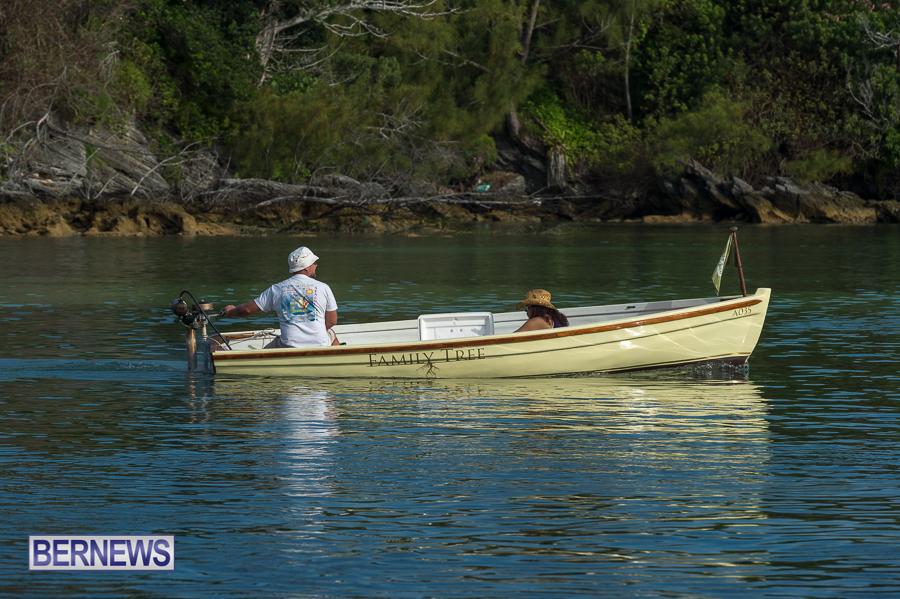 Bermuda-Seagull-Race-June-2016-JM-34