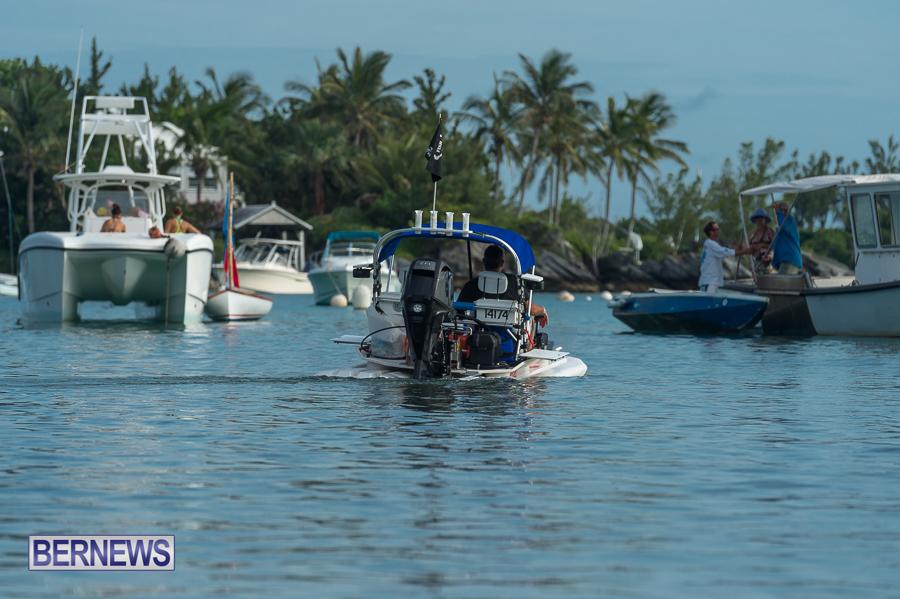 Bermuda-Seagull-Race-June-2016-JM-45
