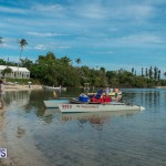 Bermuda Seagull Race June 2016 JM (7)