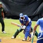 Cricket Western Stars-Southampton Rangers Bermuda June 29 2016 (10)