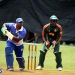 Cricket Western Stars-Southampton Rangers Bermuda June 29 2016 (14)