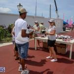 Foil Fest Americas Cup Bermuda, June 25 2016-11