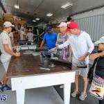 Foil Fest Americas Cup Bermuda, June 25 2016-12