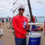 Foil Fest Americas Cup Bermuda, June 25 2016-153