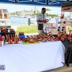 Foil Fest Americas Cup Bermuda, June 25 2016-186