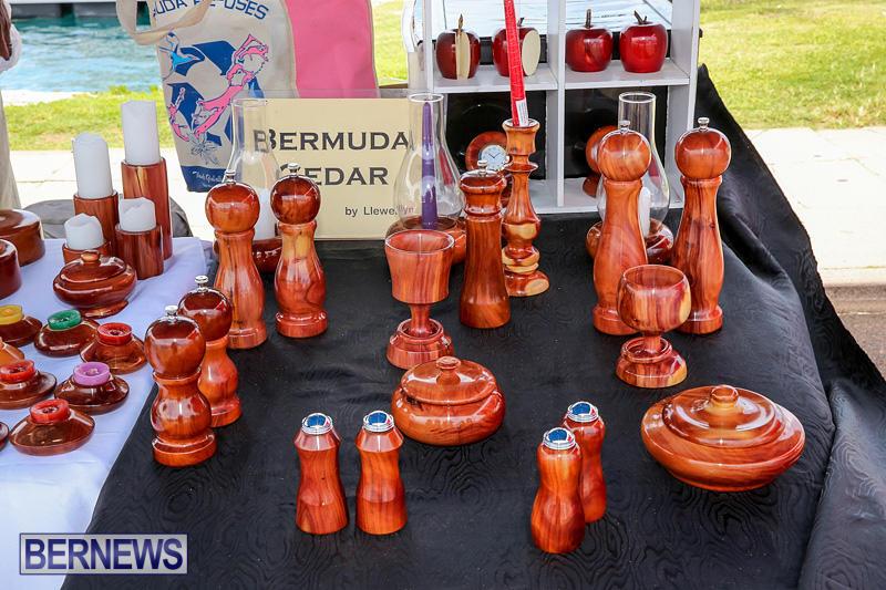 Foil-Fest-Americas-Cup-Bermuda-June-25-2016-187