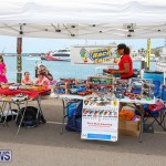 Foil Fest Americas Cup Bermuda, June 25 2016-189