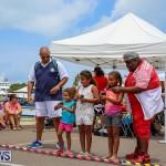 Foil Fest Americas Cup Bermuda, June 25 2016-190