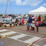 Foil Fest Americas Cup Bermuda, June 25 2016-194