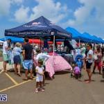 Foil Fest Americas Cup Bermuda, June 25 2016-195