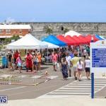 Foil Fest Americas Cup Bermuda, June 25 2016-257