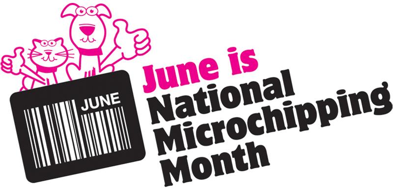 June Microchip Month Bermuda June 8 2016 1