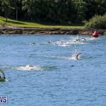 Tokio Millennium Re Triathlon Swim Bermuda, June 12 2016 (1)