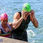 Tokio Millennium Re Triathlon Swim Bermuda, June 12 2016 (101)